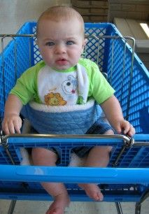 reversible baby shopping cart/chair harness