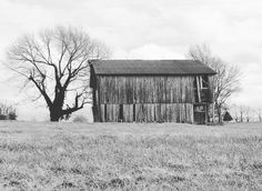 franklin ky #simple #blackandwhite #architecture #design #abandoned #rustic #barn #capture #photo #backroads #country #fields #southernliving #reclaimedwood #barnwood #natgeotravel #photographer #landscape #getoutside #farmlife #socality #liveauthentic #vsco #kentucky #restoration #ig_ruralamerica #ig_countryside #american #farm #landscapes by dudewithcamera