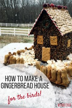 How to make a gingerbread house for the birds!