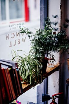 Le Creuset, French Coffee, Plants, French Cafe, French Coffee Shop, Flora, Plant