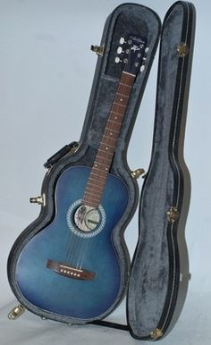 Art and Lutherie Guitar AMI with Hard Case