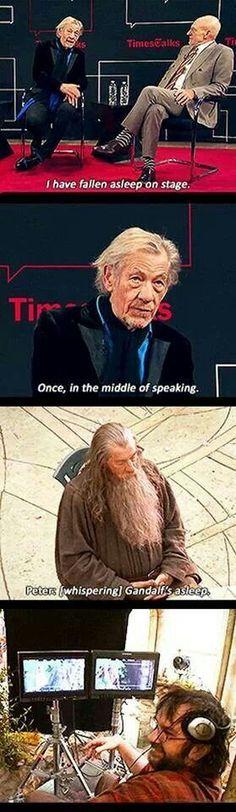 Hehe Gandalf, Legolas, Thranduil, Aragorn, Tolkien, Funny Memes, Hilarious, Funny Quotes, Funny Gifs