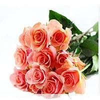 Send Fresh Flowers to India fromhttp://www.giftwithlove.net/flowers_to_India.aspx
