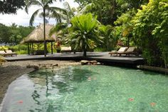 Qamea Resort & Spa, Fiji Islands - Fresh Water Pool  - Photos courtesy of Qamea Resort & Spa