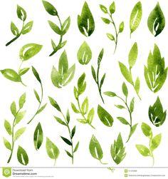 watercolor foliage - Google Search