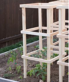 DIY Wooden Tomato Cages - sturdy, inexpensive and easy to make... #diy #gardening