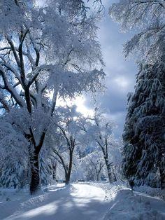 """coiour-my-world: """"Blue Lake, Kandersteg, Switzerland """""""