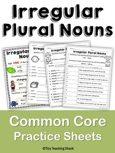 irregular plural noun practice - first and second grade Common Core worksheets
