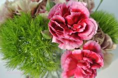 #2Flowergirls Carnations for Easter by happyhomeblog.de
