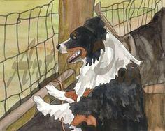 Watercolor - Black Tri Australian Shepherd
