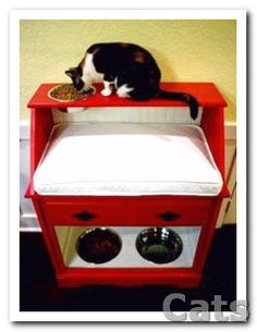 DIY Pet Station for both a cat and a dog... Just what I need.