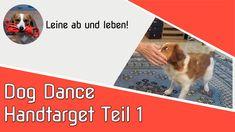 Heute etwas aus dem Bereich Dog Dance. Movie Posters, Movies, Dog Training School, Pooch Workout, Cats, Film Poster, Films, Movie, Film