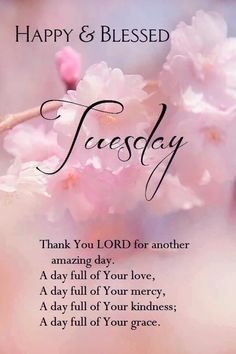 Have a Happy & Blessed Tuesday! Tuesday Quotes Good Morning, Good Morning Prayer, Good Day Quotes, Good Morning Inspirational Quotes, Morning Greetings Quotes, Good Morning Happy, Morning Blessings, Good Morning Messages, Morning Prayers