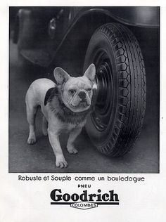 Goodrich (Tyres) 1934 French Bulldog, Bouledogue