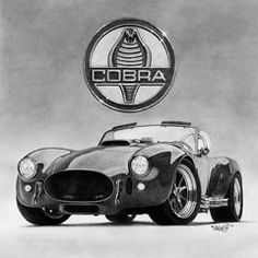 Pencil Drawings - Shelby Cobra  by Tim Dangaran