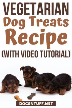 Here is an easy homemade hypoallergenic dog treats recipe/Vegetarian dog treat recipe for your allergic dog #HomemadeHypoallergenicDogTreats #VegetarianDogTreats #dogrecipes Diy Dog Treats, Dog Treat Recipes, Hypoallergenic Dog Treats, Dog Facts, Dog Biscuits, Dog Rules, Dog Friends, Pet Care, Allergies