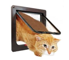 Kpmall 4 Way Cats Puppy Doggie Small Dog Glass Door (Screen Weatherproof Dust-proof -Brown X Opening) => Special cat product just for you. See it now! : Cat Doors, Steps, Nets and Perches Small Dog Door, Small Dogs, Pet Dogs, Dogs And Puppies, Dog Cat, Pet Barrier, Pekinese, Dog Stroller, Pet Gate