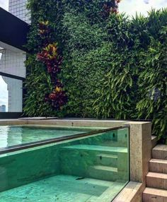 Looking for acrylic swimming pool builder or acrylic fish aquarium panel factory?We can provide acrylic wall for pool and Build awesome Acrylic aquariums. Small Backyard Pools, Backyard Pool Designs, Swimming Pools Backyard, Swimming Pool Designs, Backyard Landscaping, Luxury Swimming Pools, Piscina Hotel, Moderne Pools, Pool Landscape Design