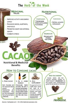 Are you looking for a rich, tasty sensation that is ram-packed full of antioxidants? Luckily Cacao, the source of chocolate, is full of nutrients that can lower risk of heart attack! Learn more about the health benefits Calendula Benefits, Lemon Benefits, Coconut Health Benefits, Benefits Of Prunes, Raw Cacao Benefits, Cacao Powder Benefits, Fruit Benefits, Le Cacao, Tomato Nutrition