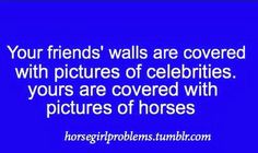 """One time my cousin walked in to my room and sad """" Wow you must really   like horses."""""""