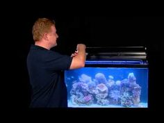 How to save your tank with SEACHEM PRIME - Fish Tails with Paul Talbot