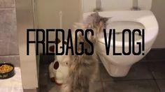 FREDAGS VLOG - YouTube