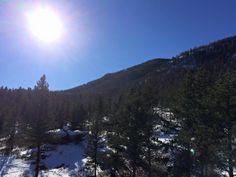Colorado  Scherlife.com