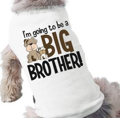 big brother dog shirt  I'm going to be a big brother by zoeysattic, $16.50    THIS IS CUTE