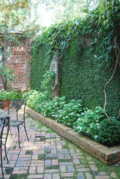 courtyard with plant covered walls and wall fountain (though I'd like mine with water coming out of it rather than plants I think!)