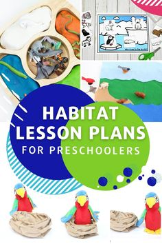 These 20+ animal habitat lesson plans from Life Over C's for preschool provide meaningful learning experiences to help your child discover all they want to know about their favorite animals' homes. These lesson plans are perfect for teachers or homeschoolers. Grab these teaching resources! #teaching #lessonplans #habitat #science #learning Science Experiments For Preschoolers, Preschool Science Activities, Educational Activities For Kids, Preschool Books, Zoo Preschool, Nature Activities, Elementary Science, Lesson Plans For Toddlers, Preschool Lesson Plans