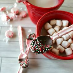 Here are The 11 Best Edible Peppermint Candy Dishes to make perfect for the holiday season.