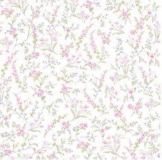 fleurs roses sur fond blanc