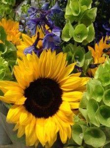 A Summer Medley of Sunflowers, Bells of Ireland & Delphinium