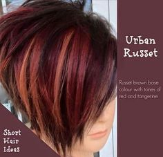 Urban Russet hair how to be a redhead, redhead costume halloween, redhead wedding Haircut And Color, Hair Color And Cut, Cool Hair Color, Hair Colour, Medium Hair Styles, Natural Hair Styles, Short Hair Styles, Short Red Hair, Short Hair Cuts