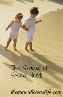 Shadow of Special Needs