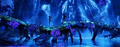 Night on Pandora