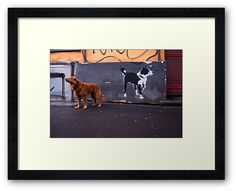 #photography #photo #art #print #artprint #streetphotography #streetphoto #color #colour #colorphoto #dogs #pets #doggie #street #frame #framedprint #findyourthing #photographs #artforsale #wallart #prague #czechia #czechrepublic #animals  #fast #reddog #gingerdog #friends #graffiti #friendship
