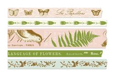 Set of 5 Nature Graphics Paper Tapes - Wedding in a Teacup