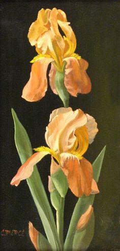 Christopher Pierce - irises
