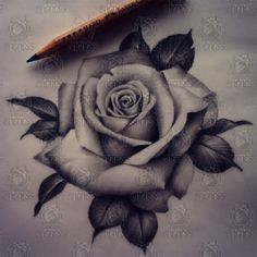 Download Free Realistic Rose Tattoo for Pinterest to use and take to your artist.