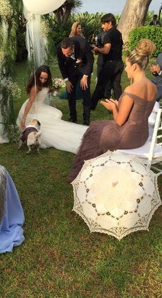 Boda con mascota que trae los anillos