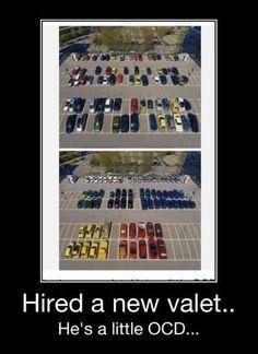 Demotivator, cars, color, colour, compulsive, obsessive, ocd, organized, parking, parking lot, sorted, valet