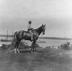 Union General Rawlins Horse Cold Harbor Virginia 1864 5x7 US Civil War Photo