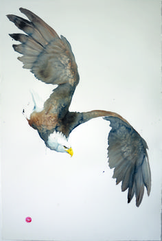 The iconic Karl Martens will be exhibiting in a solo exhibition from the 26th of September to the 7th of October in our Chelsea gallery. For more information, and to see more works, visit link in image. ______________ Bald Eagle (Unframed) Signed Watercolour on paper 59 x 39 1/2 in 149.9 x 100.3 cms ______________