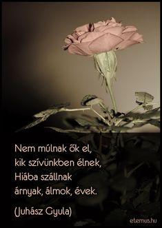 Juhász Gyula idézet a gyászról.