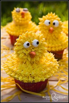 Ingrid's Adventures in Baking and Cake Decorating: Crazy Chicken Cupcakes! Easter Cupcakes, Cute Cupcakes, Cupcake Cookies, Decorated Cupcakes, Animal Cupcakes, Chicken Cupcakes, Chicken Cake, Farm Themed Party, Themed Parties