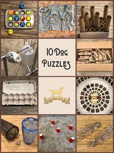 Pet Dogs, Dog Cat, Dog Enrichment, Loki, Diy Dog Toys, Dog Puzzles, Puppy Treats, Dog Games, Dog Activities