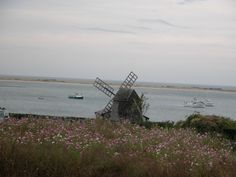 So pretty....love the windmill, flowers and boats.  Chatham, MA.   Go to www.YourTravelVideos.com or just click on photo for home videos and much more on sites like this.