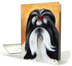 Dogs card: Shih Tzu Show Coat Dog Breed Painting Portrait Blank Note Card / Greeting Card by Lisa Charlton
