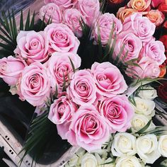 Discovered by Find images and videos about love, beautiful and pretty on We Heart It - the app to get lost in what you love. Amazing Flowers, Pretty In Pink, Beautiful Flowers, Prettiest Flowers, Plants Are Friends, Spring Sign, Flower Quotes, Love Rose, Pink Roses